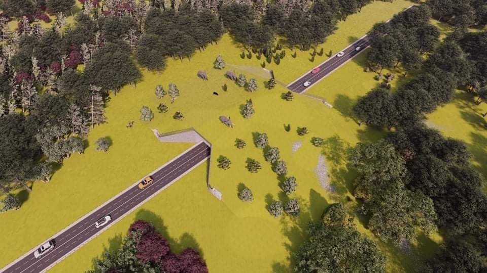 Proposed Wildlife crossing at Khata Corridor, Bardiya, Nepal