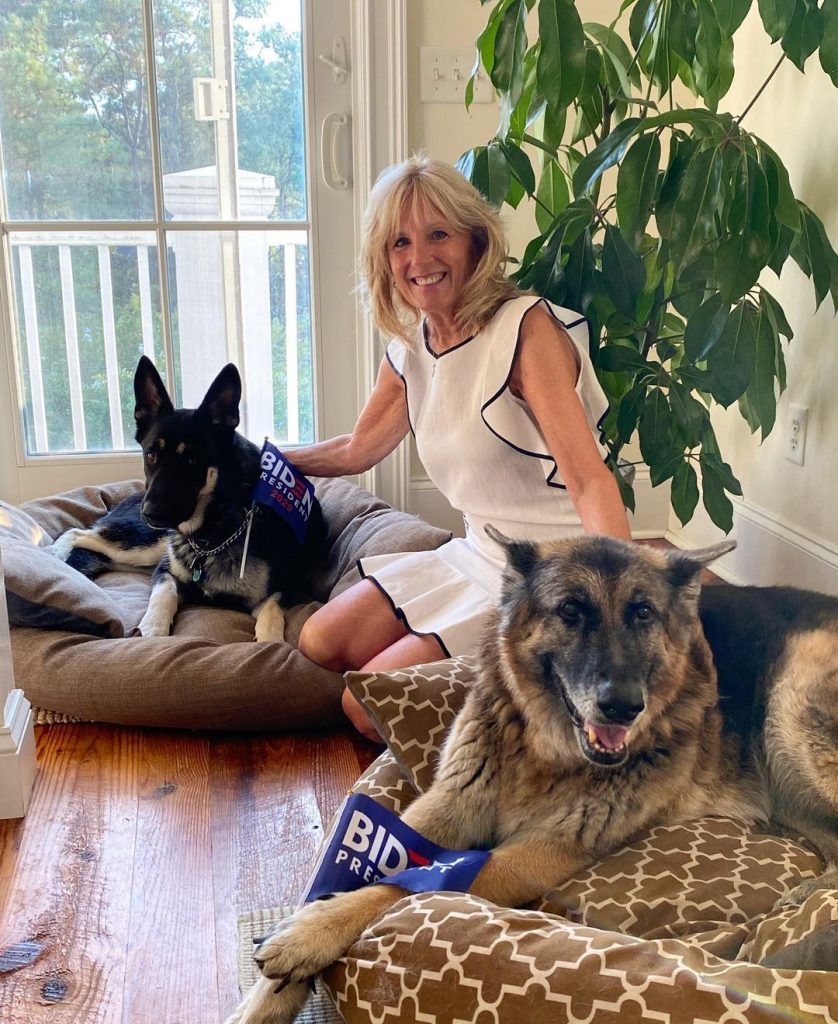 Dr. Jill Biden with pet dogs Major and Champ.